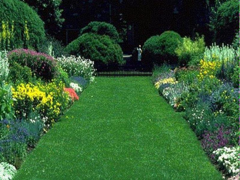 Artificial Grass installers